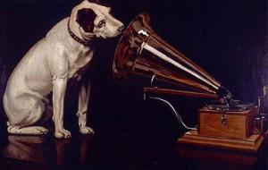Собаки способны понять направление голоса хозяина
