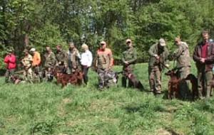 В Смоленской области прошли состязания легавых собак