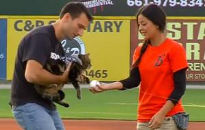 Спасшая ребенка от нападения пса кошка стала почетным гостем на бейсбольном матче