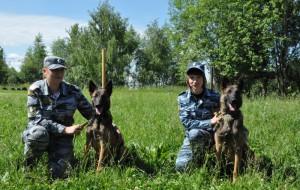 Смоленские кинологи показали работу служебных собак