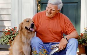 Собаки – источник долголетия человека