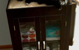 Красивый шкаф и уютный домик для кошки
