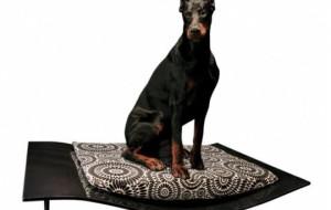 Стильная волна для больших собак