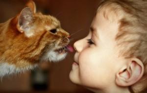 Если ребенок хочет животное