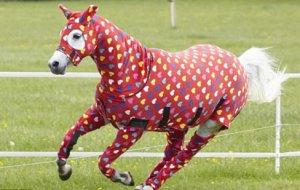 Костюмы для лошадей