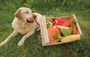 Вегетарианские игрушки для собак