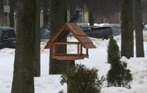 В Смоленском поозерье выбирают лучшую птичью кормушку