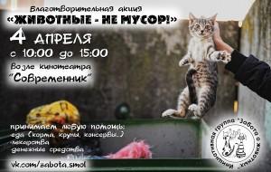 В Смоленске пройдёт благотворительная акция для помощи животным