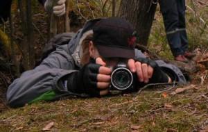 Орнитологи-любители откроют фотоохоту в «Смоленском поозерье»