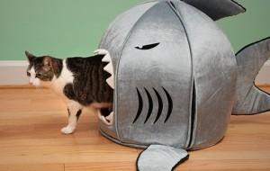 Домик-акула