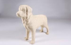 Собака для кошачьих когтей