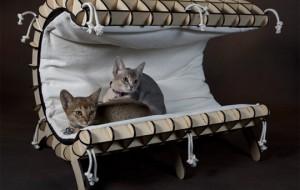 Африканская экзотика для котов