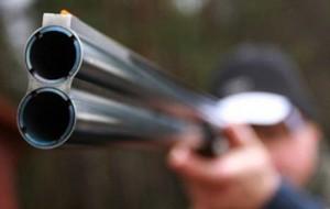 Смолянам грозит уголовное дело за подстреленного кабана