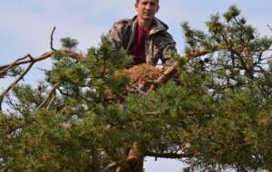 В национальном парке привели в порядок гнезда краснокнижных дербников