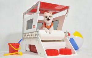 Спасательная вышка для собак