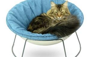 Кровать для солидных котов