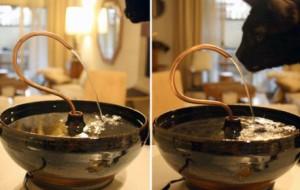 Эстетика утоления жажды
