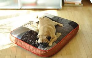 Лоскутный пуфик для собак