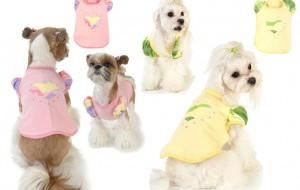 Одежда для собак: как выбрать?