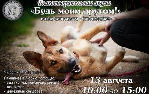 В Смоленске устроят благотворительную акцию в помощь бездомным животным