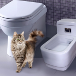 Унитаз для кошки