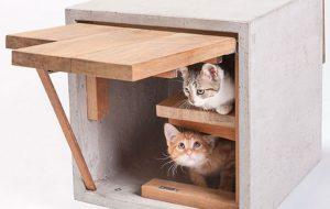 Виды домов для кошек — обзор моделей по размерам, материалам изготовления и аксессуарам