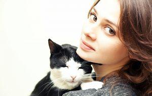 Стерилизация кошки: к чему готовиться владельцам питомца