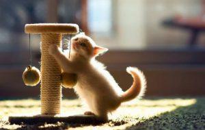 Cтоп-стресс для кошек — мнения ветеринаров
