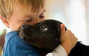 Собаки снижают риск атопического дерматита у детей
