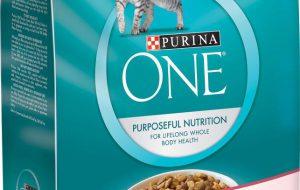 Корм для кошек «Пурина»: обзор, состав