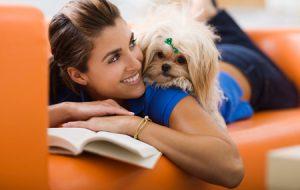 Ваша собака — что она видит и чувствует. Мир с точки зрения собаки