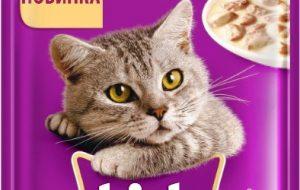Правильное питание кошек