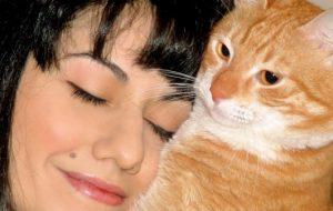 Ученые: Любителям кошек стоит опасаться токсоплазмоза