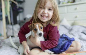 Точная формула: как перевести возраст собаки в человеческий