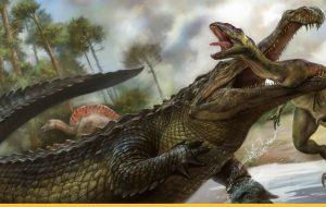 Грозные потомки динозавров — крокодилы