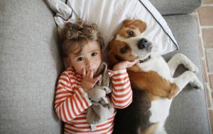 Ребенок и домашний любимец: устанавливаем правильные отношения