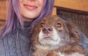 У нашей первой собаки было все – даже ошейник с кристаллами Сваровски