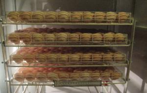 Инкубация индюшиных яиц — все тонкости выведения здоровых индюшат