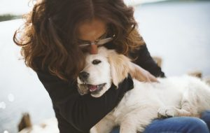 5 причин завести собаку во время пандемии
