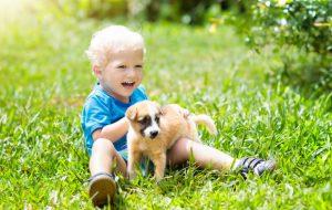 Гениальный способ заставить ребенка ухаживать за питомцем