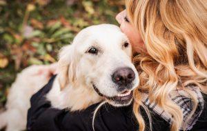 Как не быть покусанным собакой, или Собака бывает кусачей