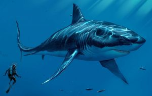 Древняя и опасная акула
