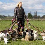 Как надо гулять с собакой?