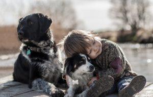 Собаки – носители новых и особо опасных вирусов: как защитить детей?