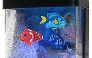 Лучшая инструкция для тех, кто решил купить рыбок для аквариума
