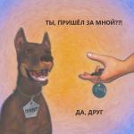 Собака из приюта. Трудности
